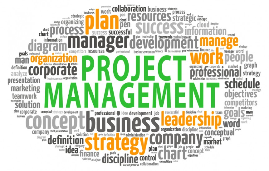 Pmp Vs Project For Project Management Techroots Blog